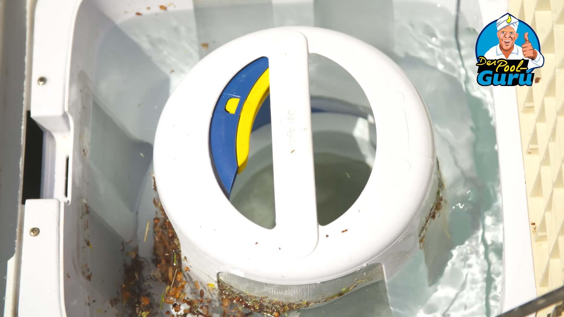 Filterreinigung Skimmerkorb