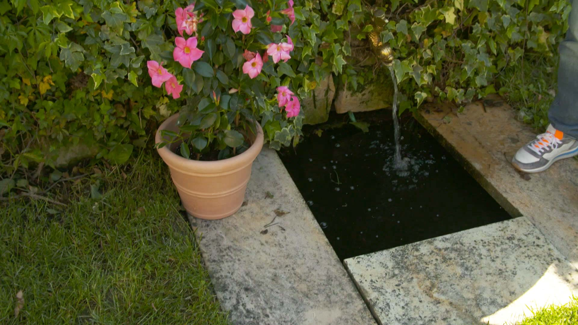 Pool befüllen mit Brunnenwasser?